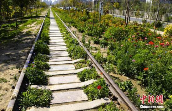 资料图:废弃的铁路铁轨。中新社记者 刘新 摄