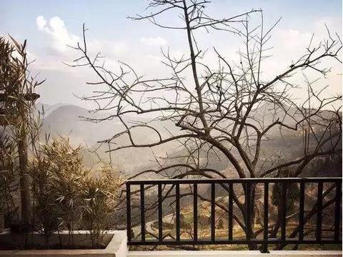 发现最美民宿:自由真意境,只在桐庐,这有触手可及的山雾云海