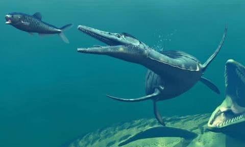 恐龙因小行星撞击地球而灭绝,如果地球再次被撞