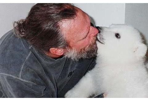 大叔收养北极熊18年,经常一起嬉戏打闹,网友看到这幕却心慌慌