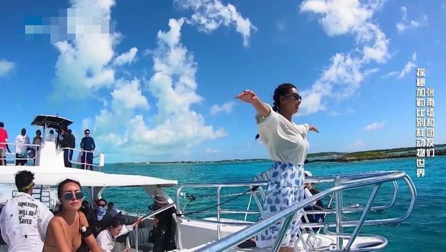 张雨绮唯美女神风出海游,遇见大猪画风太欢乐,开心喂猪停不下来