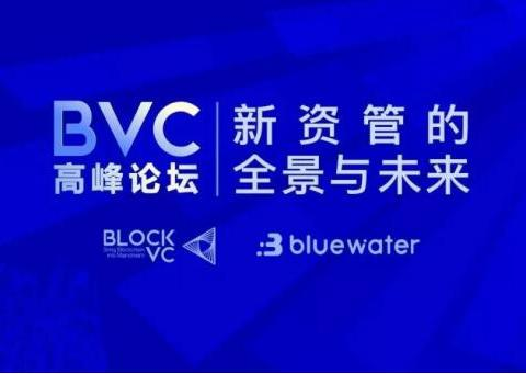 """BVC高峰论坛圆满落幕,百余名专家学者共话""""新资管"""""""