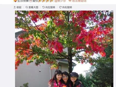 洪欣生日,儿子与闺蜜送祝福,老公张丹峰却缺席祝福