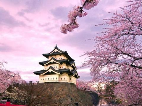 国庆境外游日本排第一!为何中国人嘴上说着讨厌