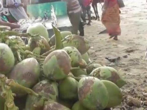 来看看印度人是怎么吃椰子的,如果你还只喝椰汁,那简直亏大了!