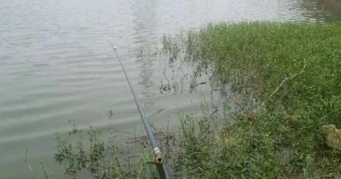 秋末钓点介绍,抢到了一个位置,渔获不比夏季少