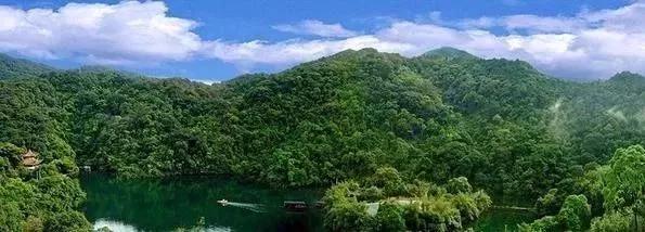 第一个国家级自然保护区,不在青海西藏,而是广东的一座山!