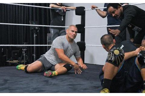 外媒爆料UFC凯恩以及拳王泰森福里已开始接受摔角训练!