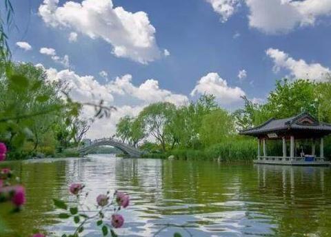 一场春雨,让济南大明湖变得愈加通透明亮娇艳