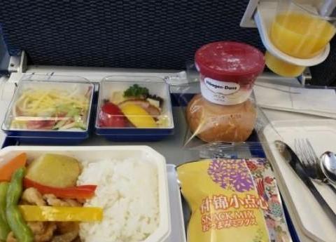 网友晒出各国飞机餐,阿联酋最土豪,中国的……说好的美食大国呢