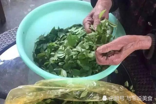 菜市场里卖树叶,20元1斤一群人抢着买,老人说都是宝