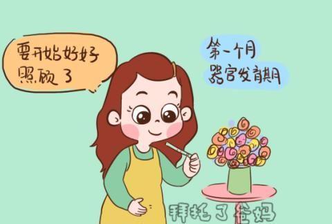 胎儿发育的3个关键期,这几个底线要守住,关系胎儿发育得好不好