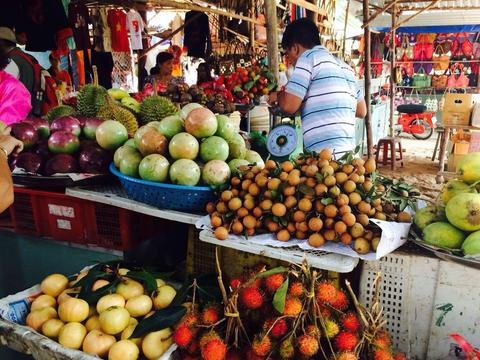 越南水果卖不出去,怪中国要求高?网友:东南亚不止你们产水果