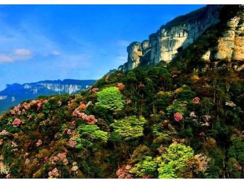 重庆市国家级自然保护区分布及功能区划