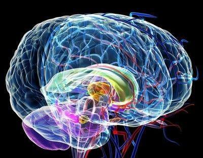 """你的140亿脑细胞,如何""""保护""""好?坚持7件事,或可防止脑老化"""