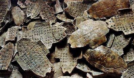 殷墟出土一批甲骨,有关单位曾出悬赏,认出一个甲骨文重奖十万元