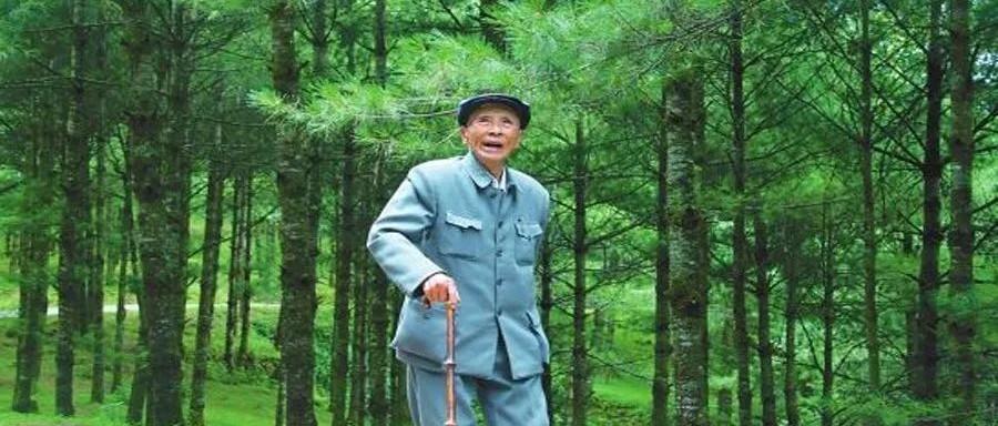 """最美奋斗者丨""""草鞋书记""""杨善洲:用为民情怀筑起绿色丰碑"""