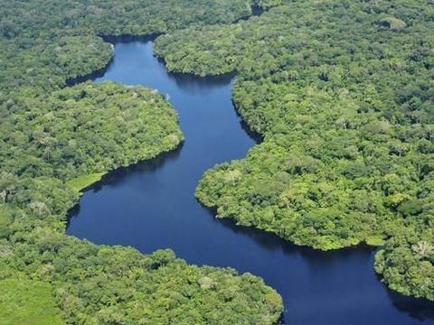 地球上的绿色地狱——亚马逊丛林