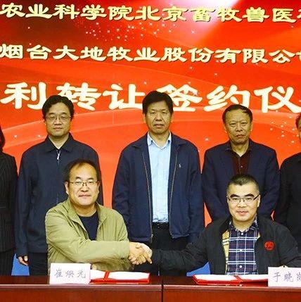 行业|中国农科院北京牧医所与烟台大地举行小型白羽肉鸡培育方法专利转让合同签约仪式