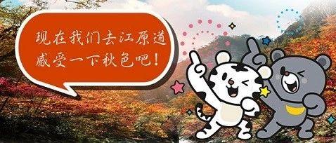 充满秋天气息~江原道赏枫必去!