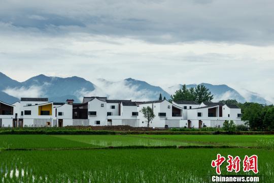 """浙江的""""网白""""村落——东梓闭村。 富宣 供图"""