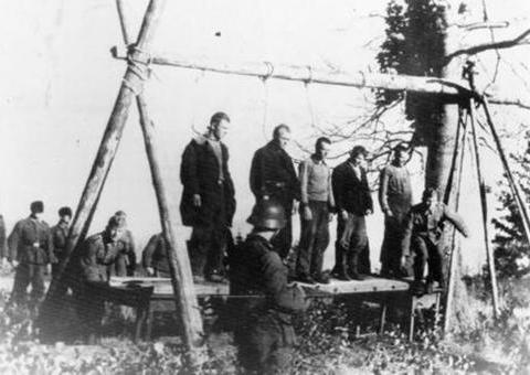 斯摩棱斯克战役:德军争夺莫斯科门户的战役
