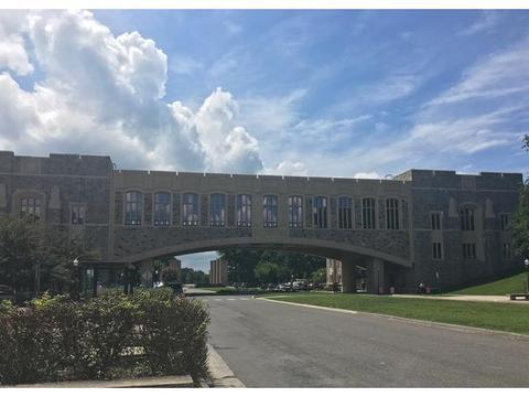 申请弗吉尼亚理工大学需要哪些条件?