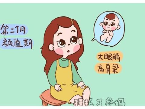 孕早期3个月,是胎儿发育的关键期,3个方面发育会定下来
