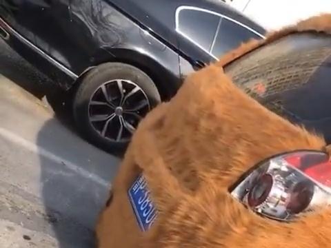 """山东聊城一车主给爱车穿上""""皮草"""",跑在路上就像一只""""毛绒熊"""""""