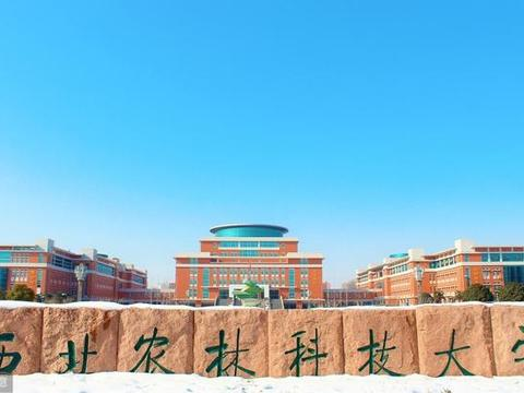 2019年985高校分数线比较低的大学专业汇总,建议收藏