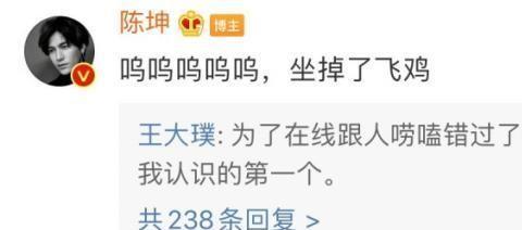 陈坤变网瘾少年 因和网友聊天 错过飞机