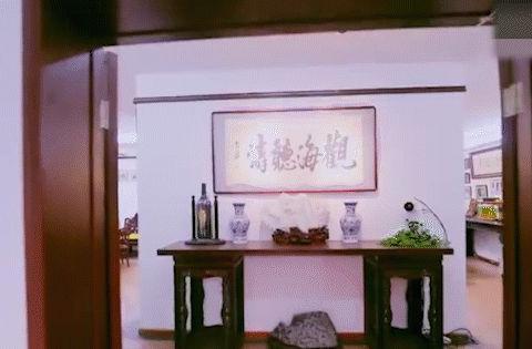 赵忠祥豪宅曝光,全是珍藏古董字画价值不菲,鱼缸就像游泳池