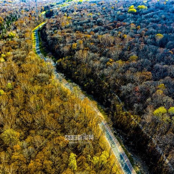 冰城已入冬 还是五彩斑斓的模样丨森林火险橙色预警发布 20日新一股冷空气拍马杀到