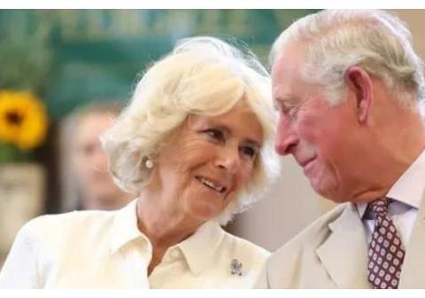 卡米拉声称夏洛特继承了她对舞蹈的热爱?威廉:和你有什么关系!