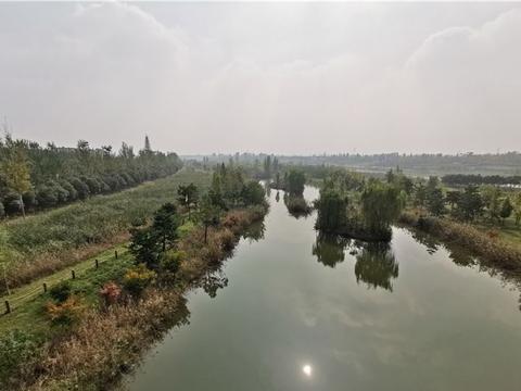 西安1200亩湿地公园,能赏花、能观鸟、能骑行,适合周末休闲游