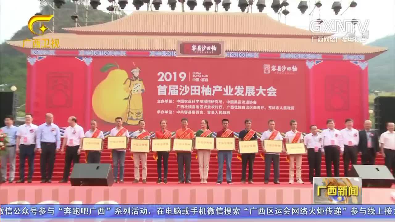 容县举行首届沙田柚产业发展大会