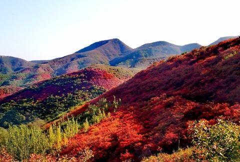 禹州郏县汝州交界,将要满山红遍