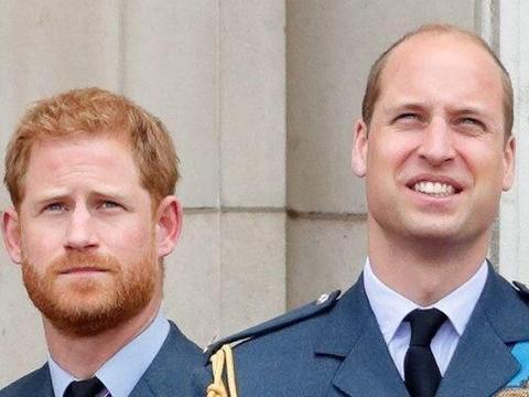 哈里王子承认和威廉王子有裂痕