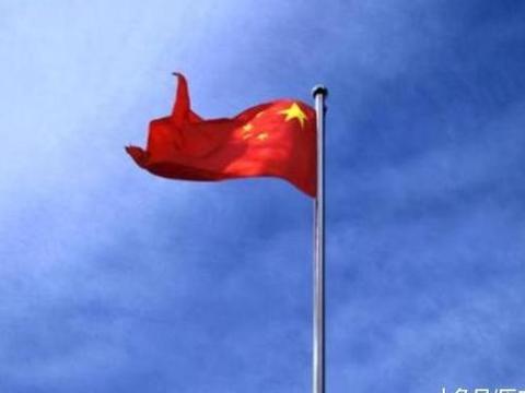 巴西网友:去了趟中国,终于明白巴西为何不是发达国家了