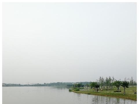 休闲好去处,生态大氧吧——官亭林海