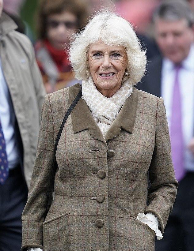 72岁卡米拉越来越俏!棕色大衣英伦范十足