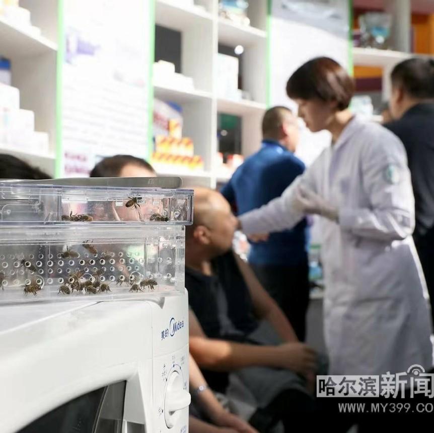 """药材、中成药、疗法……龙江""""北药""""上展会让市民开眼"""