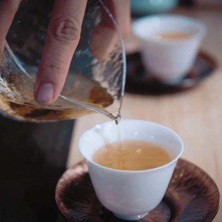 云柯庄园   一股来自普洱茶界的新生力量
