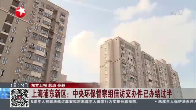 上海浦东新区:中央环保督察组信访交办件已办结过半