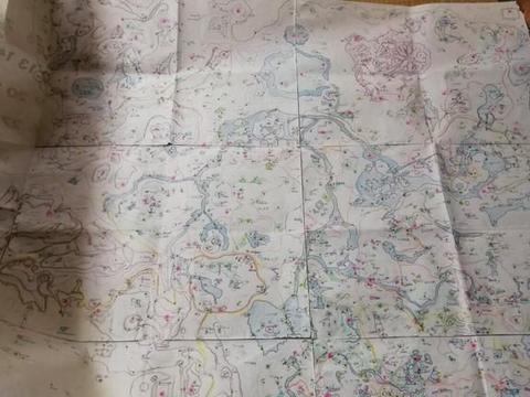 母亲亲手绘制《旷野之息》地图,尺寸超大各个地标全标明超贴心
