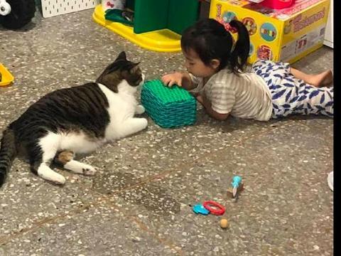 女儿把猫拉过来玩过家家游戏
