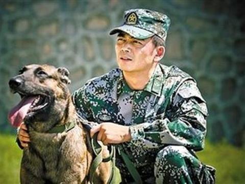 影视回忆杀:你还记得杨烁、王煜主演的《神犬奇兵》吗?