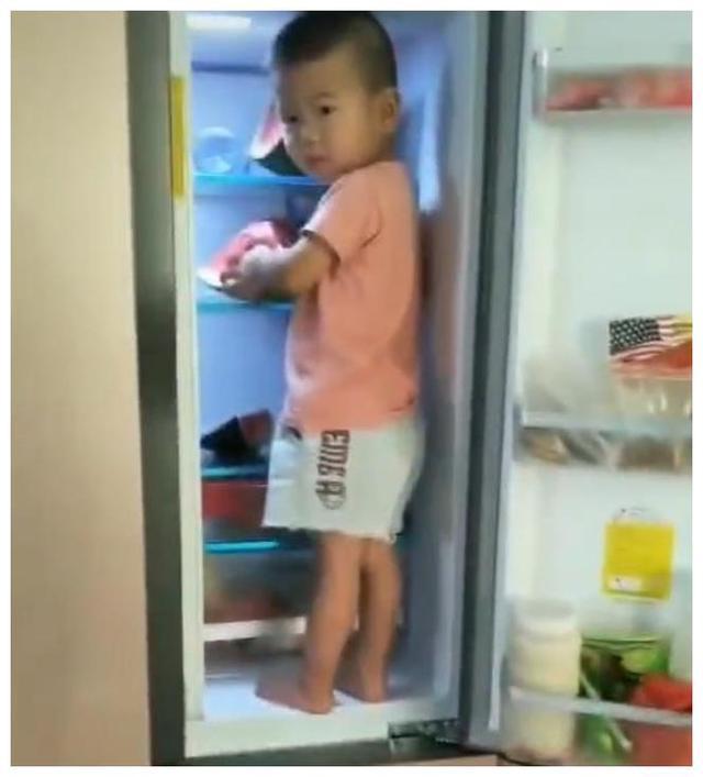 萌娃站冰箱上偷吃西瓜,看到案发现场,网友狂赞:此娃长大了不得