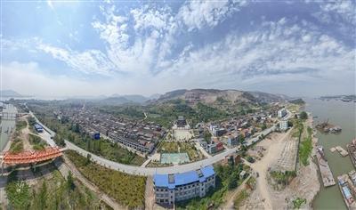 阳新新闻:生态转型看王曙