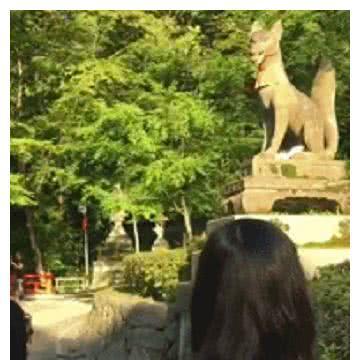 流浪猫在一座狗狗的雕像下面呼呼睡大觉,路人走近一看笑喷了!